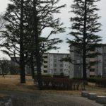 人生二度目のUR賃貸住宅ライフ|千葉県船橋市習志野台団地