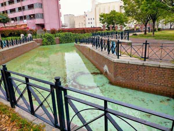 兵庫駅南公園運河