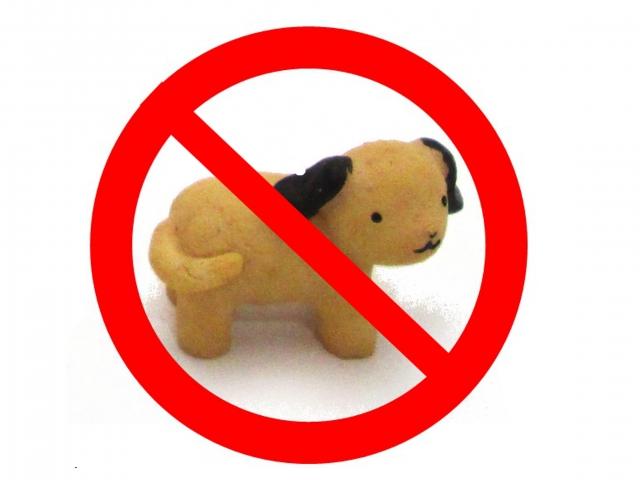 規約違反でペット飼育